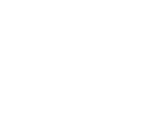 Cloudy, moderate or heavy snow